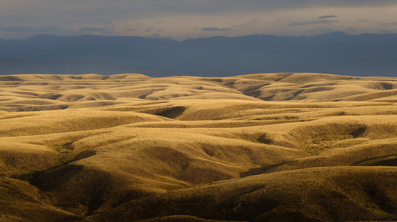 Pamu protects 1320 hectares under QEII covenant in Otago